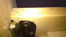 hmyz štěnice 2