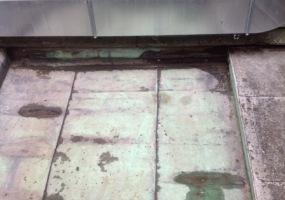 úklid holubích exkrementů a dezinfekce - po 2